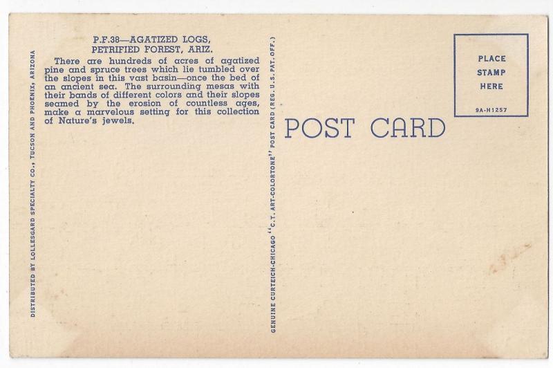 AZ Petrified Forest Agartized Logs 1939 Curteich Linen Arizona Postcard