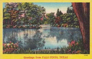 Texas Greetings From Palo Pinto