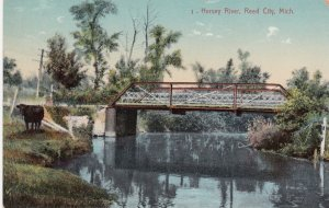 REED CITY , Michigan , 00-10s Hersey River
