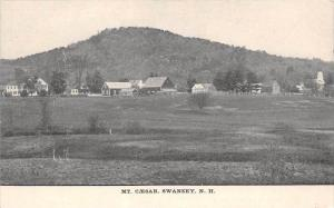 25337 NH, Swanzey, Mt. Caesar