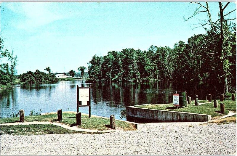 Chrome WATER SCENE Laurel - Near Seaford Delaware DE AH7949