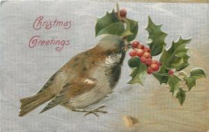 Christmas~Sparrow Reaching for Holly Berry Branch~Silver Textured Back~Emb~1908