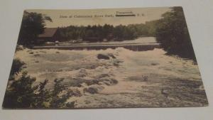 postcard,Penacook,NH,Dam at Contoocook River Park c1910  $15