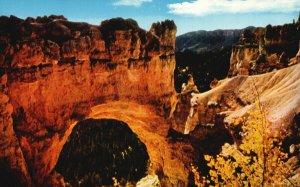 Bryce Canyon Nat'l Park, UT, Natural Bridge, Chrome Vintage Postcard g9232