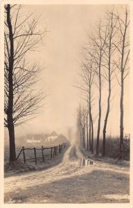 Netherlands Amerongen Herfst, Village Road Trees