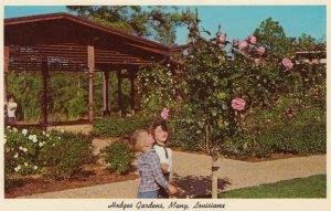 MANY, Louisiana, 1950-1960s ; Hodges Gardens Rose Tree