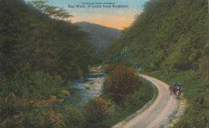JAMAICA, 1900-10s ; Bog Walk