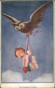 Fantasy - Owl Catches Cupid c1910 Postcard