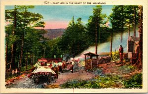 Scenic Mountains Heart Camp Life Postcard Old Vintage Card View Standard Post PC
