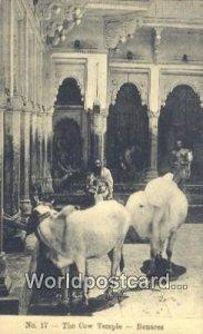 The Cow Temple Benares, India Unused