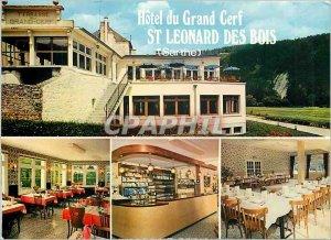 Postcard Modern Hotel du Grand Cerf St Leonard Hood