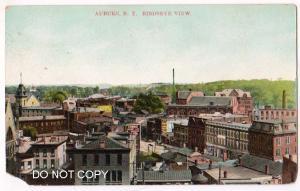 Birdseye View, Auburn NY