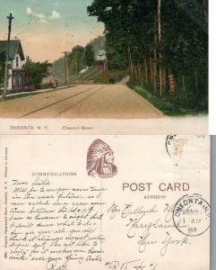 ONEONTA N.Y. CHESTNUT STREET 1908 ANTIQUE POSTCARD