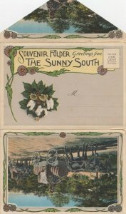 Greetings from the Sunny South , 1900-10s