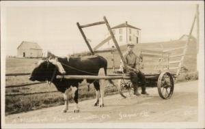 Gaspe Quebec Habitant Hay Cart Real Photo Postcard dcn