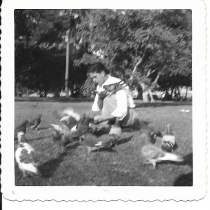 Old Photo Rudy Feediing Pigeons in Miami Fl Dec 1949 PHO4-62821