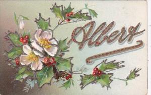 Tucks Name Card Albert