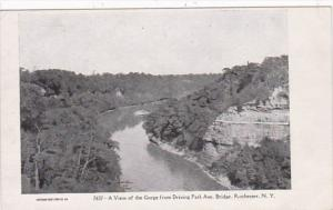 New York Rochester View Of The Gorge From Driving Park Avenue Bridge