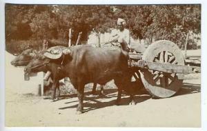 Agra Chakrata India Wagon RPPC Postcard