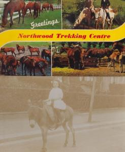 Northwood Trekking Centre Peak District Horse Riding Centre 1970s 2x Postcard