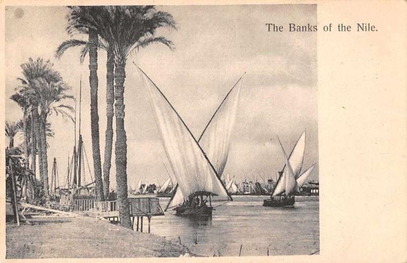 Egypt Africa Banks of the Nile Sailing Antique Postcard J76348