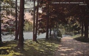 ALBANY, New York, PU-1913; Glimpse of the Lake, Washington Park