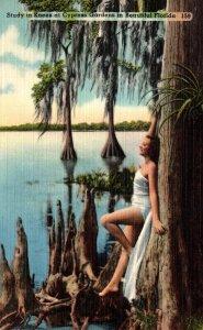 Florida Cypress Gardens Beautiful Girl Study In Knees