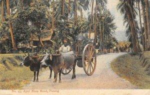Ayer Etam Road PENANG Ox Cart Malaysia 1909 Vintage Postcard