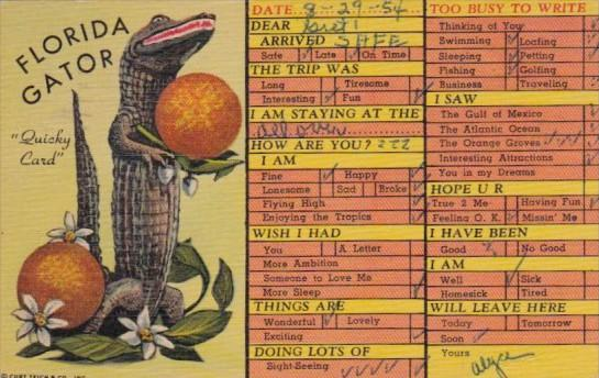 Humour Busy Person's Correspondence Card Florida Gator Quicky Card 1954 Curteich