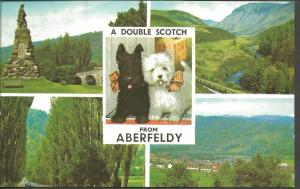Postcard Multiview A DOUBLE SCOTCH from ABERFELDY Perth & Kinross Scotland