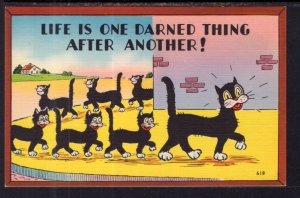Life is One Darned Thing After Another. Cat Comic