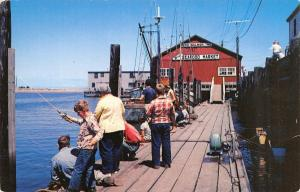 Westport Washington~Seafood Market Wharf~Young & Old Fish From Dock~1950s PC