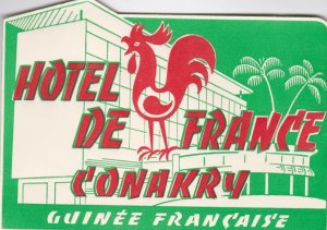 Guinee Francaise Conakry Hotel De France Vintage Luggage Label sk1347