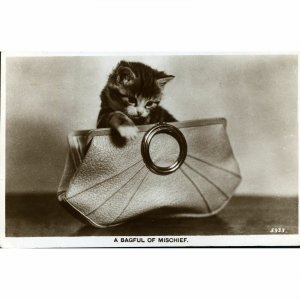 Valentine's Real Photograph Postcard 'A Bagful of Mischief'