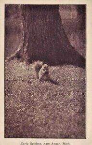 Ann Arbor Michigan squirrel early settlers postcard