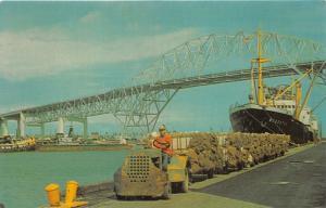 Corpus Christi Texas~Port Corpus Christi~Man Drives Cart of Sacks~Ship~1950s Pc