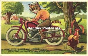 Dressed Cats, No Gentleman on the Motorbike, Rooster loses Tail (1959)