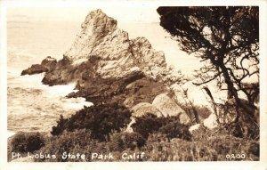 LP65  Pt. Lobus State Park Carmel    California Postcard RPPC