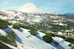 Spain Tenerife Teide Snowed Mountain Landscape Postcard