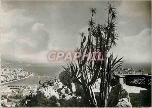 Modern Postcard The Grand Bay Beach Mauritius There