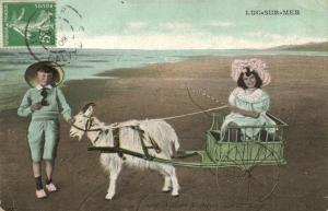 CPA LUC-sur-MER - Voiture a chévre sur la plage (141356)