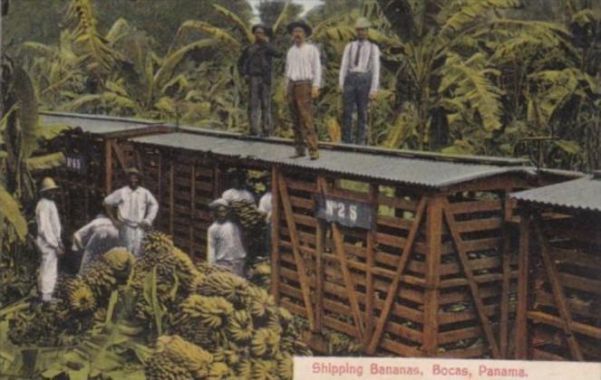 Panama Shipping Bananas By Train