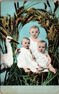 THREE BABIES in A BASKET w/ STORK ANTIQUE POSTCARD - VINTAGE POSTED