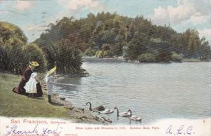Mother and kids feed swans, Stow Lake and Strawberry Hill, Golden Gate Park, ...