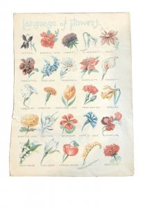 Language of Flowers - Victorian Trade Card