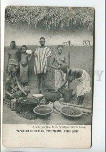 438900 AFRICA Cooking Palm Oil Sierra Leone Nude Girls Vintage postcard
