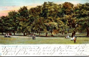Louisiana New Orleans City Park Dueling Oaks 1905 Tucks