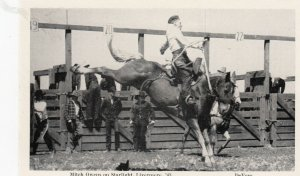 LIVERMORE , Montana , 1943 ; Rodeo , Mitch Owens on Starlight