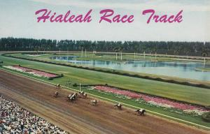 Down the Stretch, Hialeah Race Track, Florida, 40-60s