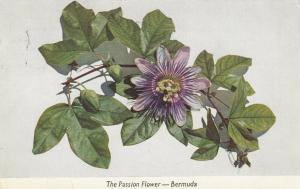 BERMUDA, PU-1960; The Passion Flower